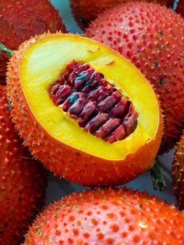 Gac Fruit Vine (nomordica cochinchinensis) #MOM-COC